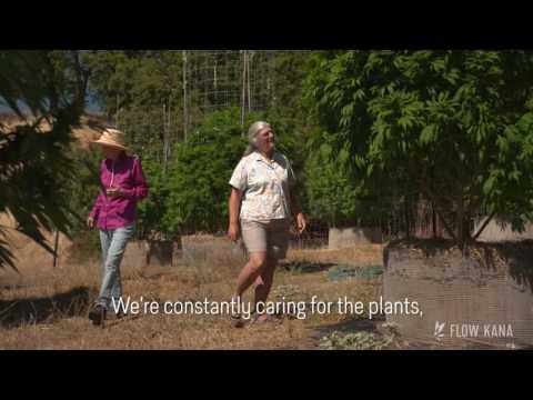 Meet Your farmer with Flow Kana - Wild Women Herbals