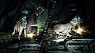 PRZYNIEŚĆ CZY SIĘ NA TYM POŁOŻYĆ?  | Blair Witch #4
