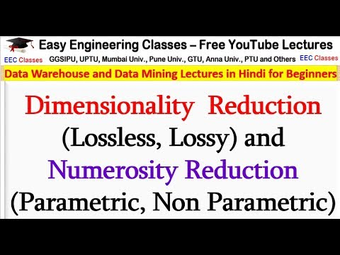 Dimensionality  Reduction (Lossless, Lossy) And Numerosity Reduction (Parametric, Non Parametric)