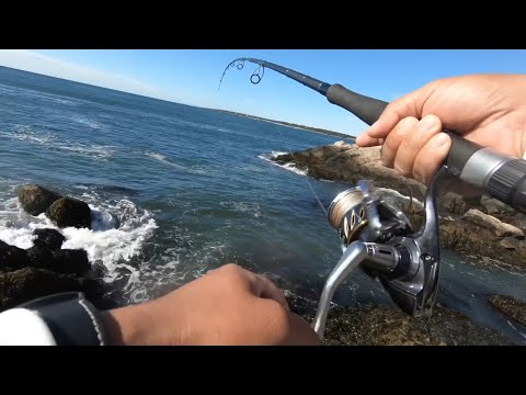 Jamestown Ri Tautog Fishing Ep-2