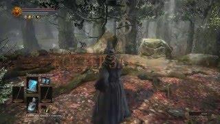 Скачать Dark Souls 3 14 Лес мучений