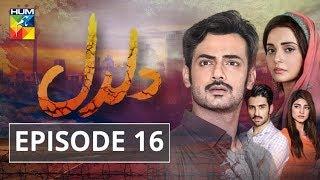 Daldal Episode #16 HUM TV Drama