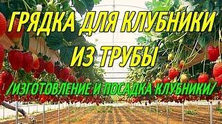КЛУБНИКА В ТРУБАХ/ИЗГОТОВЛЕНИЕ ГРЯДКИ ИЗ ТРУБЫ И ПОСАДКА КЛУБНИКИ.