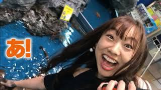 東京・富士山・名古屋・京都・大阪等、日本の代表的な観光スポットが揃う東海道沿線を紹介するJapan Highlights Travel。桜・紅葉・世界遺産等のお勧めスポット情報も。