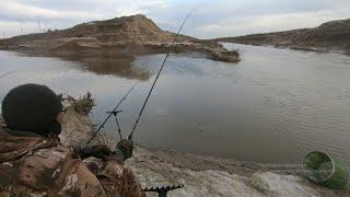 Рыбалка на Мутном канале В поисках сазаньего счастья