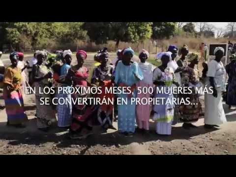 Guinea Bissau: 320 mujeres ya son propietarias de sus tierras