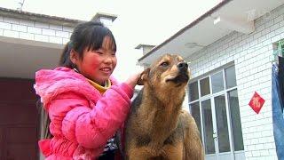 В Китае более 60 миллионов детей остаются на попечении бабушек и дедушек, когда их родители уезжают.(Социологи в Китае пытаются привлечь внимание к серьезной проблеме, угрожающей, по их мнению, будущему стран..., 2016-05-05T13:10:24.000Z)