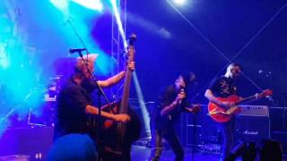 Demented are Go - Welcome back to Insanity Hall Elm 2017
