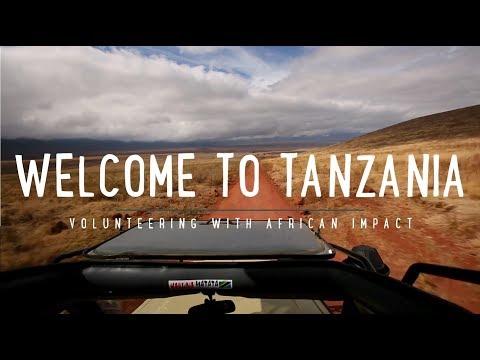 Volunteer in Tanzania with African Impact
