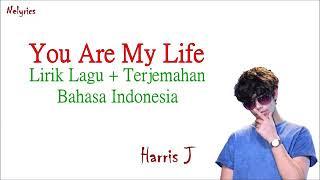 "Harris J "" You Are My Love "" Lyrics dan terjemahan indo"