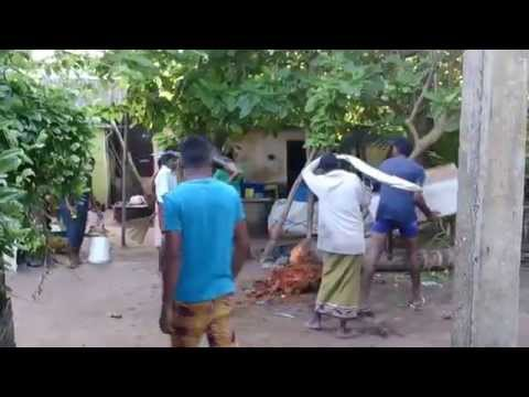 Sri Lanka beach video, The Mount Lavinia Beach near Colombo