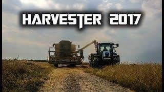 Żniwa 2017 - New Holland - Barley Harvester 2017