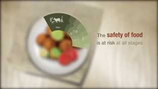 WHO-EMRO: From farm to plate, make food safe