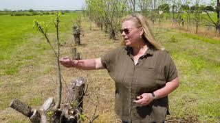 Oklahoma Gardening Episode #4744 (05/01/21)