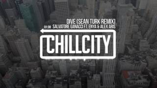 Salvatore Ganacci Ft. ENYA & Alex Aris - Dive (Sean Turk Remix)