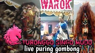 warok EBEG @turonggo singo mudo live puring