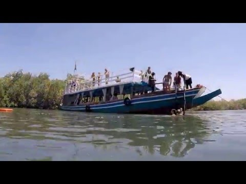 Lazy Day Cruise along the River Gambia