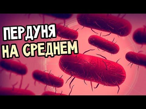 Скачать игры бактерии на компьютер