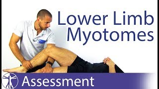Myotomes Lower Limb | Peripheral Neurological Examination