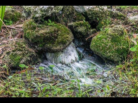 Spring Documentation: Stone Island artesian Wells