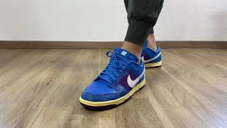 5 STYLES ON FEET   Nike Dunk Low x UNDEFEATED   5 on it