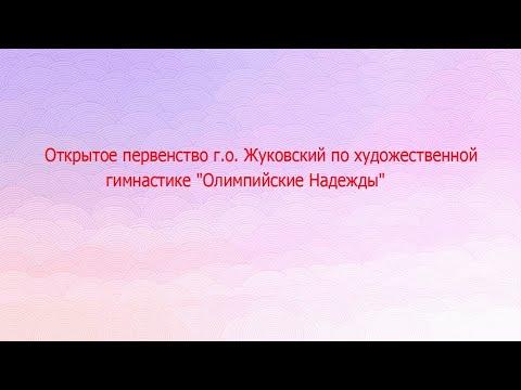 Открытое первенство г.о Жуковский по ХГ