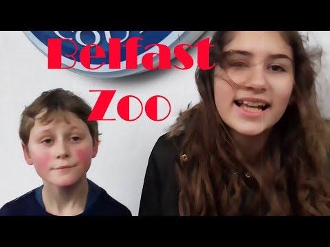 Northern Ireland Trip - Belfast Zoo