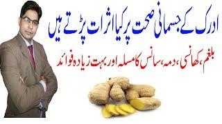 Ginger Benefits for health in urdu || Adrak se balghmi khansi ,dama,joroh ka dard ka ilaj In Urdu