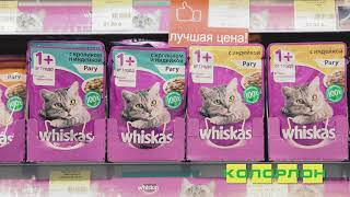 Товары для животных в Новосибирске в магазинах КОЛОРЛОН