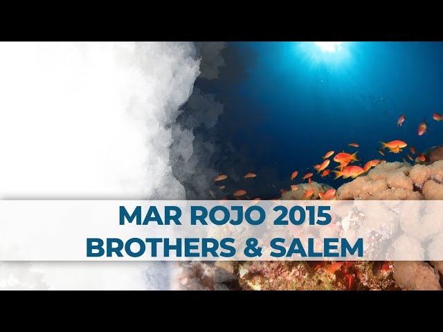 2 Little Divers | Mar Rojo 2015 - Brothers & Salem Express