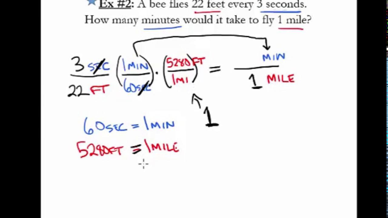 Homework help for precalculus