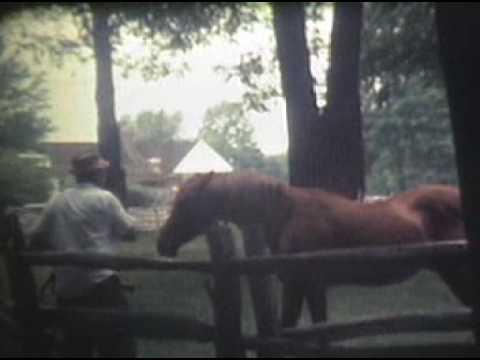 Reldan Horse Farm NJ
