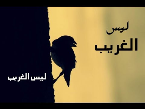 video laysa al gharib