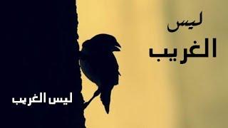 ليس الغريب ـ كـالمة ــ Laysa al gharib