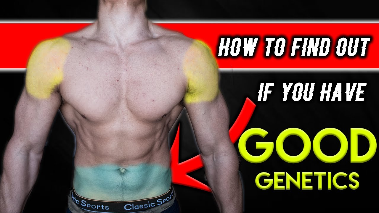 How to tell if your genetics are good for bodybuilding for Find a good builder