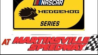 HEDGEHOGS SERIES ROUND 4 QUALIFYING NASCAR STOP MOTION