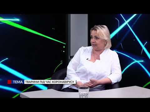 Медіа-Інформ / Медиа-Информ: Ми з Богданом Максимцем. Світлана Барсукова. Тварини під час коронавірусу