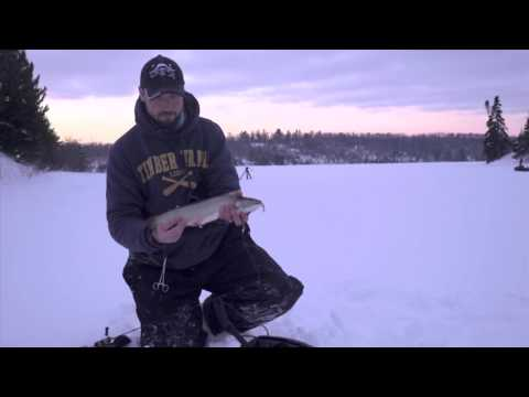 Ice fishing lake trout near duluth mn in depth outdo for Trout fishing mn season
