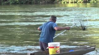 Pesca de Piraputanga no rio Manso/MT