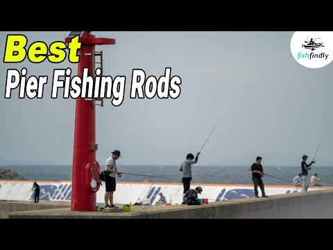 Best Pier Fishing Rod In 2020 – Guide & Review From Experts!