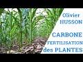 Carbone et Fertilisation des Plantes - Olivier HUSSON