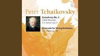 Symphony No.2 in C Minor. IV. Finale. Moderato assai. Allegro vivo