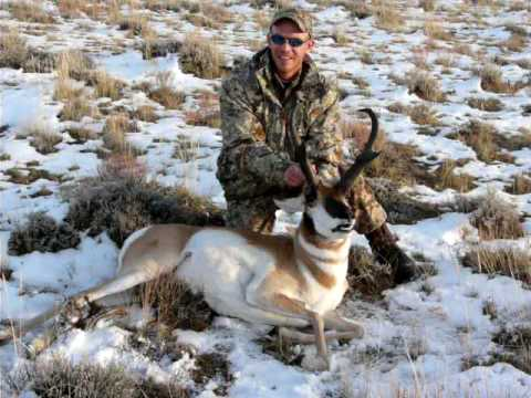 Nick's 2009 Wyoming Boone and Crockett Record Book Antelope Green Score 84 3/8""