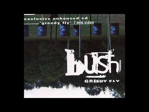 Bush - Swallowed (Toasted Both Sides Please) Goldie Remix