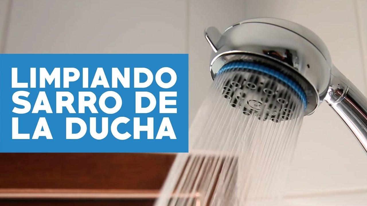 Como Limpiar La Cal De La Ducha Eclctico Cuarto De Bao By With  ~ Como Limpiar La Alcachofa De La Ducha
