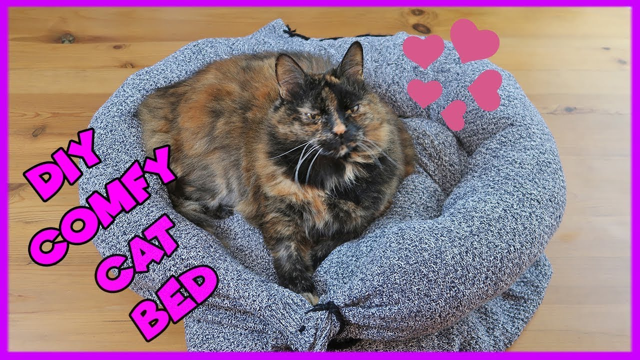 How To Make A Cat Bed From An Old Jumper Easy Comfy