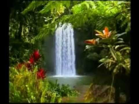 Edenu thotalo P.D. Sundar Rao BOUI Song