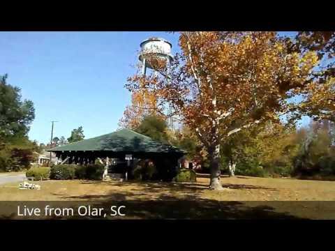 Happy Thanksgiving from Olar, SC.
