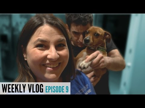 WEEKLY VLOG #9: An American In Paris, New Easter Candies, And Am I A Hoarder!?