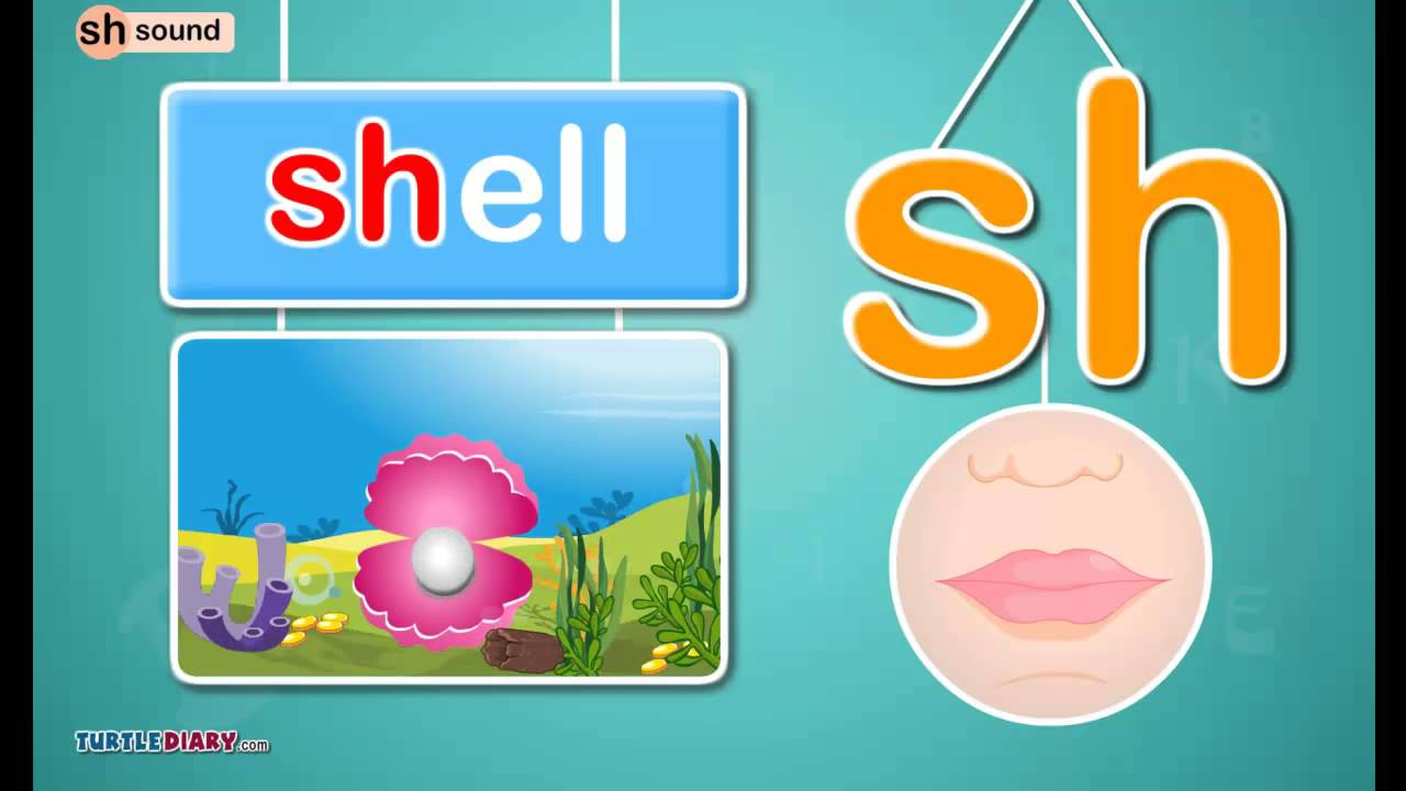 medium resolution of Digraph /sh/ Sound - Phonics by TurtleDiary - YouTube